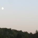 Луна созревает